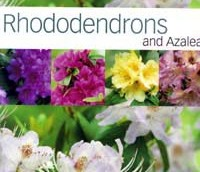 Rhododendrons and Azalea by Kenneth Cox