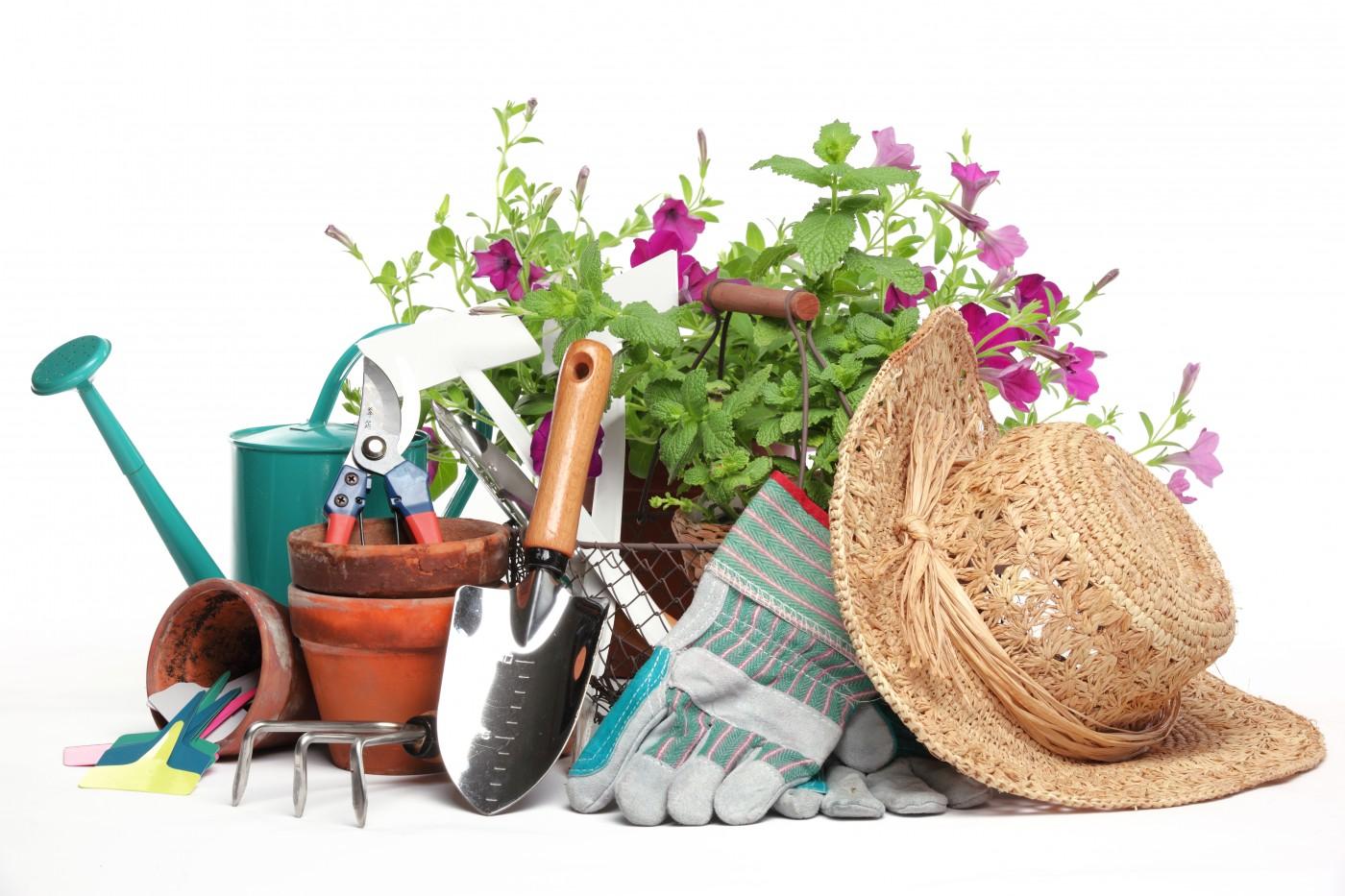 Gift vouchers from glendoick garden centre for Gardening gift vouchers