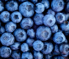Fruit and Veg Blueberry shutterstock_108450557