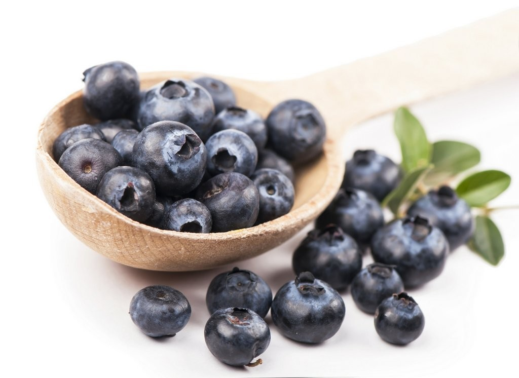 Fruit and Veg blueberry white back shutterstock_204471337