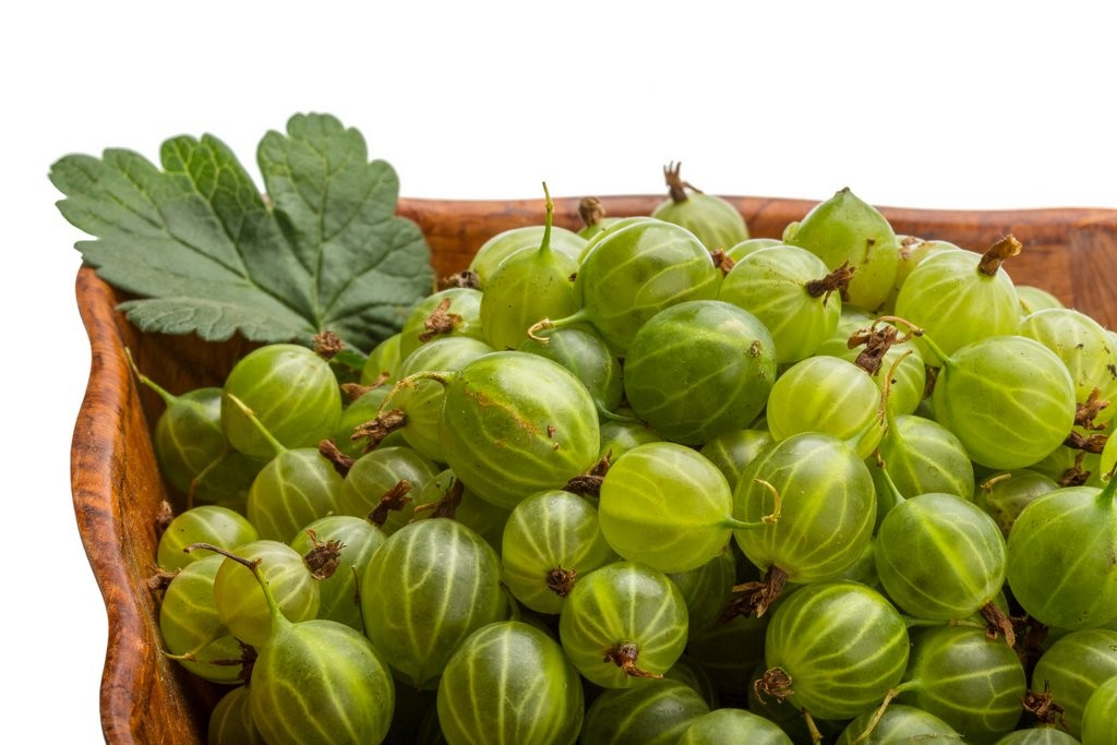 Fruit and Veg gooseberries shutterstock_232512781