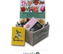 Christmas Ladies Flower Hamper