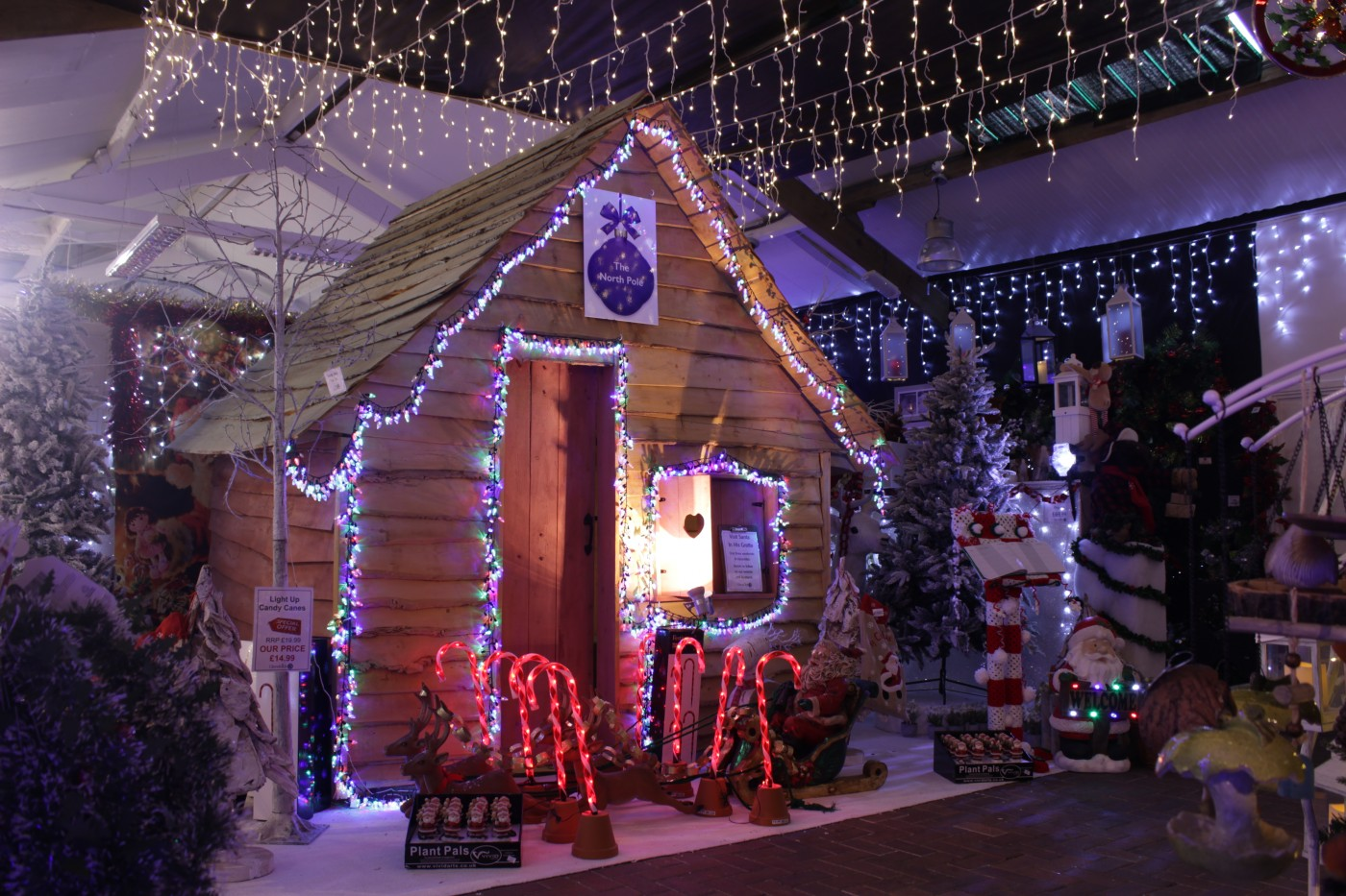 Santa Claus woodland cabin lit with fairy lights at Glendoick