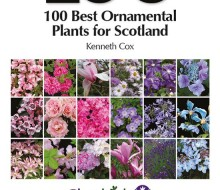 100 Best Ornamental Plants for SCotland